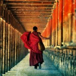Drigong Ti Temple