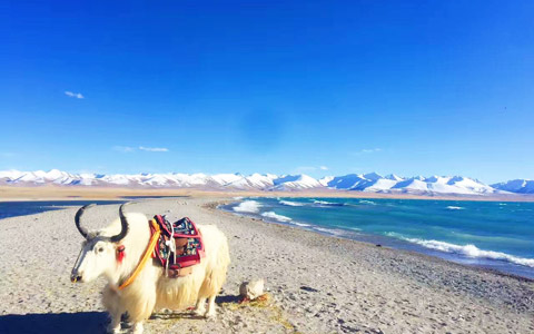 Nagqu Lake and River: top five lakes and rivers in northern Tibet