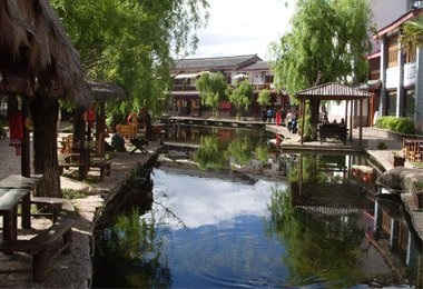 charming and peaceful ancient town with vibrant willow and small canals