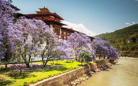 How to Get to Bhutan from India