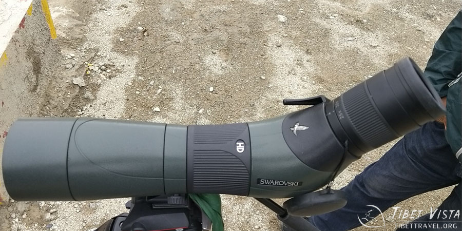 The Swarovski telescope our guests brought