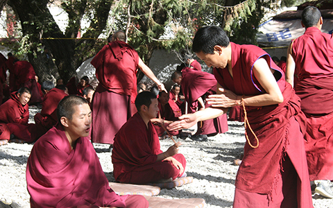 Debate in Tibetan Buddhism: What Are They Debating and Where to Enjoy the Debating in Tibet