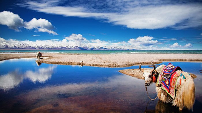 the crystal blue lakes around Lhasa