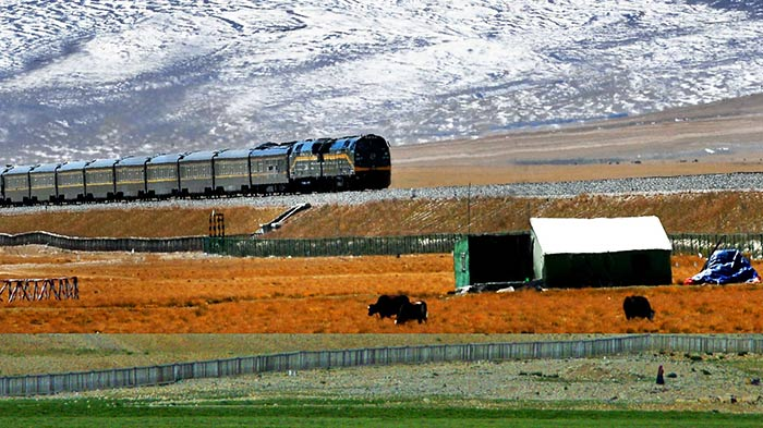 Trains from Xining to Lhasa