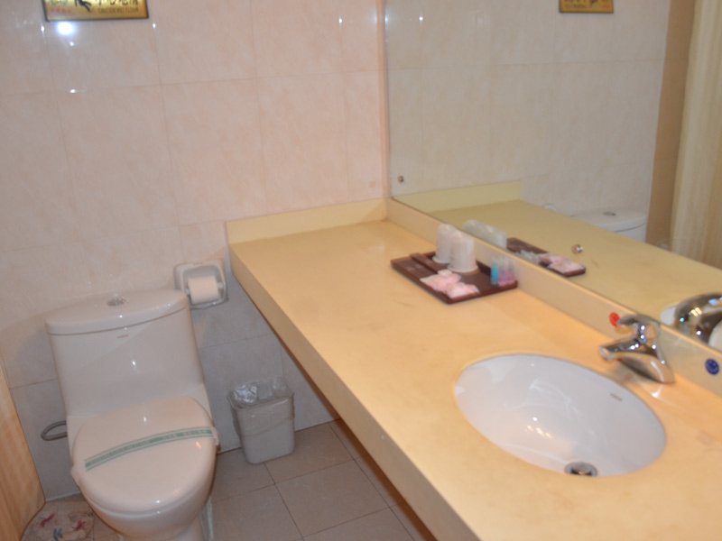 Toilets in the Tibet Hotels
