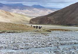 Tibet Tingri to Everest Base Camp Trek