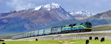 Tibet Railway Travel
