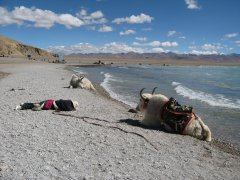 Some useful tips for traveling to Namtso lake