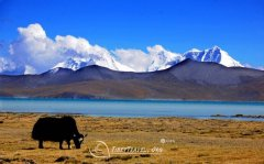Tibet Travel Tips to Visit Yamdrok Lake